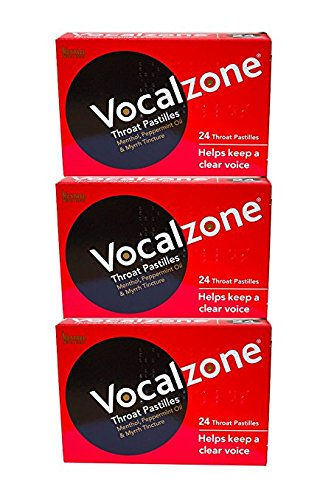 VocalZone Throat Pastilles (24 x 3) Multipack Offer by Vocalzone (Best Throat Lozenges Uk)