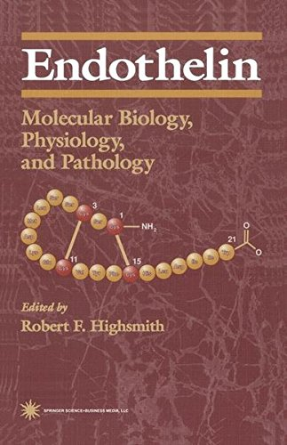 Endothelin: Molecular Biology, Physiology, and Pathology (Contemporary Biomedicine) by Brand: Humana Press