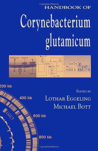 Handbook of Corynebacterium glutamicum