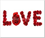 Love Spelled With Isolated Red Roses On White Gallery Wrapped Canvas Art (20in. x 24in.)
