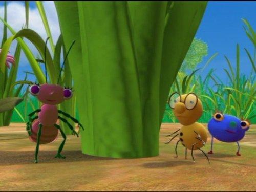 - Mr. Mocking-Bug; Odd Bug Fellows