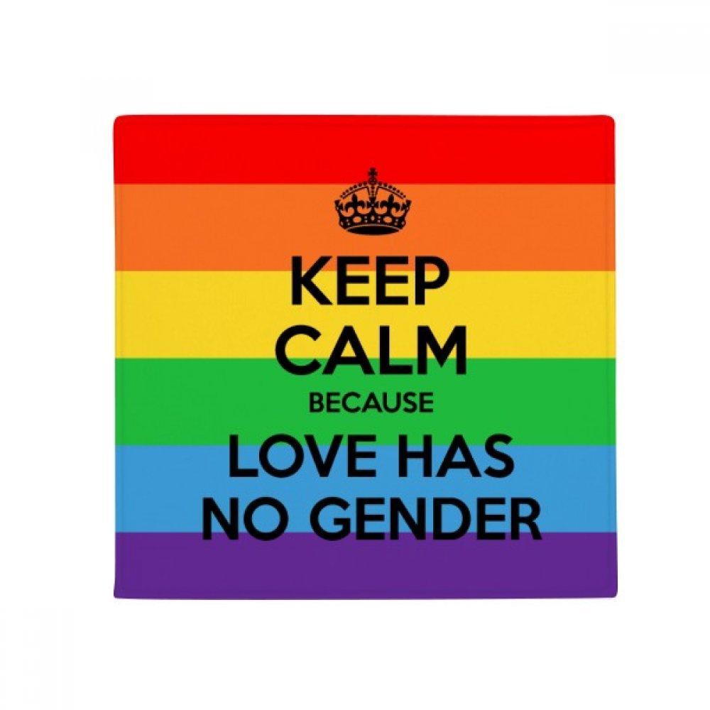 DIYthinker Gay Lesbian Transgender Bisexuals LGBT Anti-Slip Floor Pet Mat Square Home Kitchen Door 80Cm Gift
