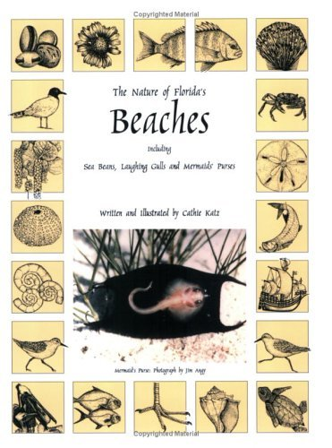 The Nature of Florida's Beaches Including Sea Beans, Laughing Gulls and Mermaids' Purses by Cathie Katz - Beach Palm Mall Florida