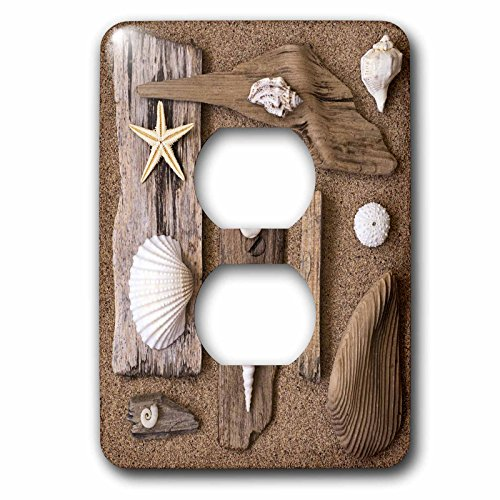 Still Life Shells - 3dRose Andrea Haase Still Life Photography - Driftwood assortment with shells and starfish - Light Switch Covers - 2 plug outlet cover (lsp_266548_6)