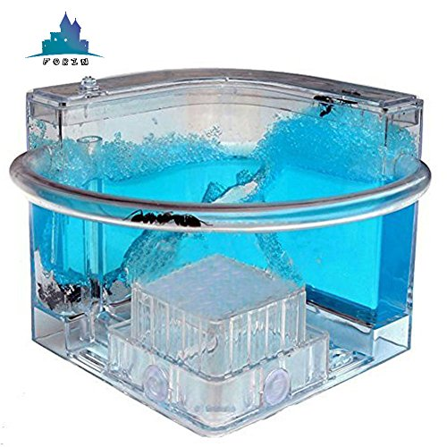 Ant Farm (Forin Ant Castle Fram With Feeding System, Newfangled Toy For All Ages, Bioscience Learning, Observing Ant Habit Big Size Color Blue)
