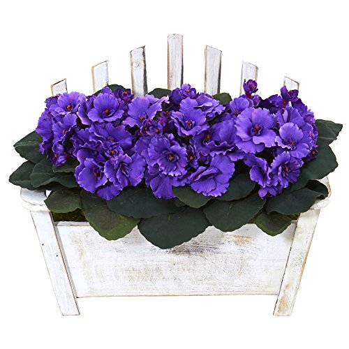 Flowering African Violet (Nearly Natural African Violet Artificial Plant in Wooden Bench Planter)