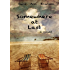 Somewhere at Last (Willow's Journey Book 2)