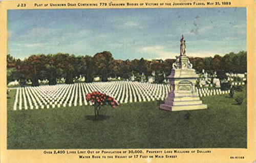 Cemetery Postcard - Unknown Plot Grandview Cemetery Johnstown, Pennsylvania Original Vintage Postcard