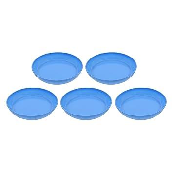 Amazon Com Saim Plastic Round Saucers Plant Pot Saucers Potted