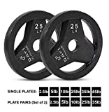Day 1 Fitness Cast Iron Olympic 2-Inch Grip Plate for Barbell, 25 Pound Set of 2 Plates Iron Grip Plates for Weightlifting, Crossfit - 2' Weight Plate for Bodybuilding