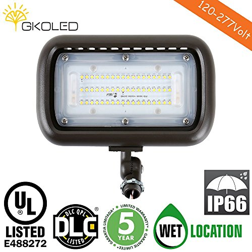1000W Flood Light Lumens - 3
