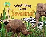 What Lives in the Savanna?, Oona Gaarder-Juntti, 1604531789