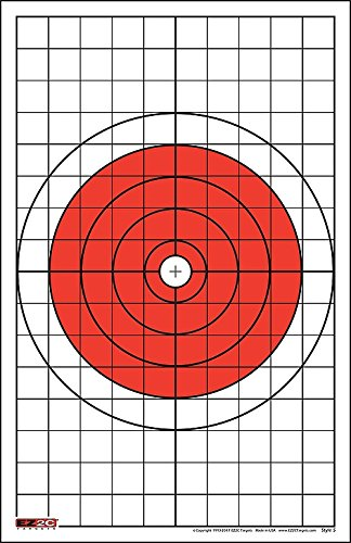 EZ2C Targets Style 5 Bullseye Pistol and Rifle with 1