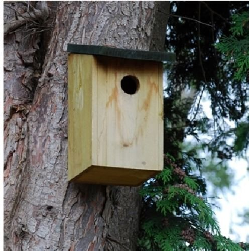 Garden Mile/® 4x Traditional Wooden Garden Birdhouse Nesting Boxes With Green Hinged Roof For Easy Cleaning Predator Proof To Accomodate Small Birds Sparrows Tits Robin Nester