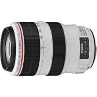 Canon EF 70-300mm f/4-5.6L IS USM UD Telephoto Zoom Lens for Canon EOS SLR Cameras International Version (No warranty)