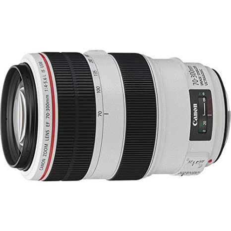 Review Canon EF 70-300mm f/4-5.6L