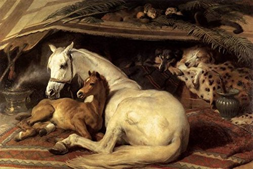 Wall Art Print entitled Sir Edwin Henry Landseer - The Arab Tent by Celestial Images | 10 x 7