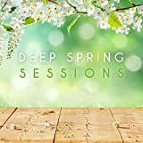 Deep Spring Sessions Album Cover