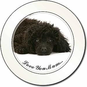 Caniche miniatura 'Love You Mum' Impuesto de matriculación disco regalo permisio