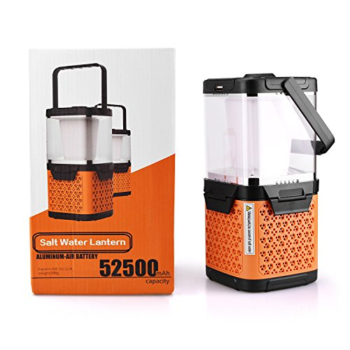salt water battery charger - 1