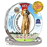 Runfleax Dog Collar flea and tick Control - flea and tick Prevention for Dogs - 100% Natural Ingredients - 8 Months pet Protection - Hypoallergenic flea Collar for Medium Dogs …
