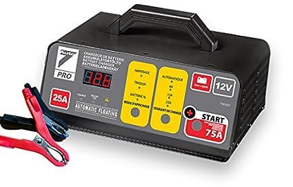 Auto7 708.950 - Cargador de batería de 25 A con ayuda de arranque de 75 A 12 V para baterías 10 Ah a 250 Ah