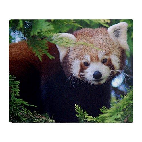 CafePress Red Panda Soft Fleece Throw Blanket, 50