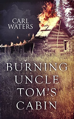Burning Uncle Tomu0027s Cabin By [Waters, Carl, Chinyere, ...