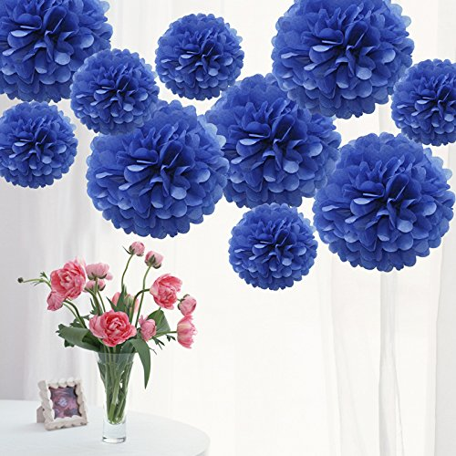 Blue wedding decorations amazon tts 10 pack mixed tissue paper pompoms pom poms flower wedding party decoration royal blue junglespirit Choice Image