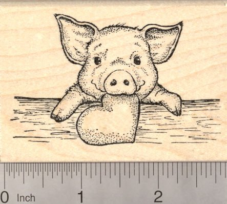 pig rubber stamps kritters in the mailbox pig rubber stamp