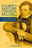 Schubert's Mature Instrumental Music: A Theorist's Perspective (Eastman Studies in Music)