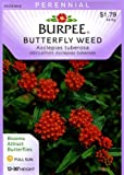 Burpee 41772 Butterfly Weed Asclepias tuberosa Seed Packet, Appliances for Home