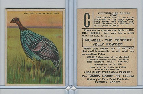 FC1, Harry Horne Co, Nu-Jell, Animals And Birds, 1925, Vulture Guinea Fowl from OpenBinders