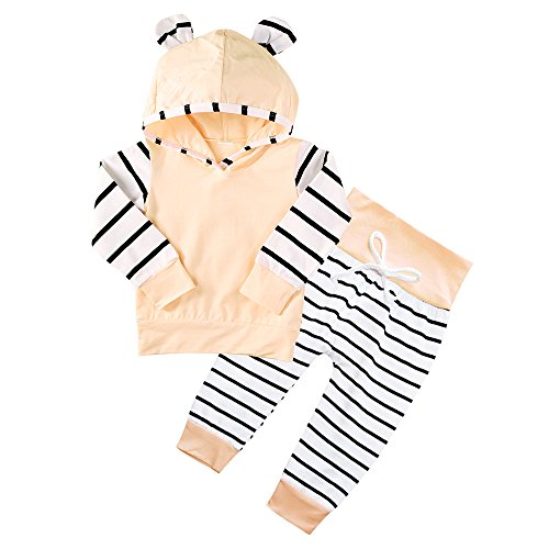 Girls 3 Piece Sweater (Baby Infant Girl Clothes Outfits 2 Pieces With Hoodie Top and Pants (Pink, 3-6 Months))