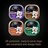 CESAR CLASSICS Poultry Variety Pack Dog Food Trays 3.5 Ounces (Pack of 24)