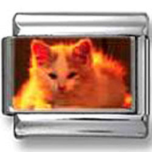 Red Kitty photo Italian charm (Italian Charm Kitty)