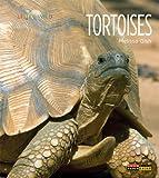 Living Wild: Tortoises, Melissa Gish, 0898127777