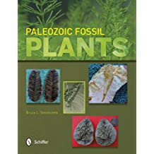 Paleozoic Fossil Plants