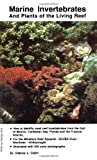 img - for Marine Invertebrates and Plants of the Living Reef book / textbook / text book