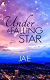 Download Under a Falling Star in PDF ePUB Free Online