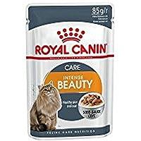 Royal Canin Feline Health Nutrition Intense Beauty Gravy Cat wet food Pouches ,Box of 12x85g