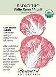 Palla Rossa Mavrik Radicchio Seeds - .20 grams - Organic