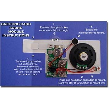 No1gs 60 second sound voice recordable module for greeting cards no1gs 60 second sound voice recordable module for greeting cards make your own sound m4hsunfo