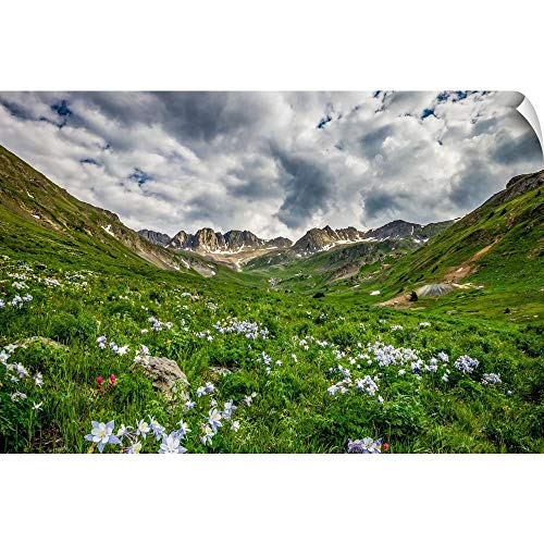 CANVAS ON DEMAND Columbines in The Valley Below Handies Peak, Gunnison National Forest, Colorado Wall Peel Art P.