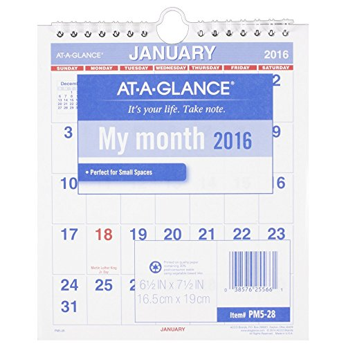 AT-A-GLANCE Mini Monthly Wall Calendar 2016, 12 Months, 6.5 x 7.5 Inch Page Size (PM528)