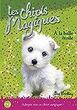 Les chiots magiques - tome 06 : À la belle étoile (06)