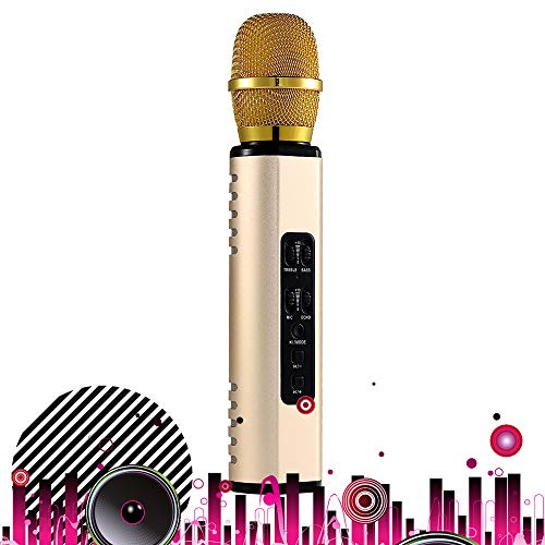 SHENGY Double Horn Heart-Shaped Pickup Microphone, Adjustable Sound Bluetooth Stereo Karaoke, Reverb Sound, Intelligent Noise Reduction, Support Various Systems,Gold