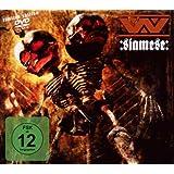Siamese (Ltd.ed.)