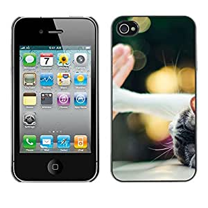 Hot Style Cell Phone PC Hard Case Cover // M00100394 five give animals me // Apple iPhone 4 4S