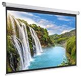 Displays2go, Commercial Projector Screen, Aluminum, Fiberglass, and PVC Construction – Black (PRSELE90)